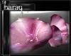 [bq]SB.Romance -Two-