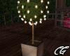 Romantic Sunrise Tree