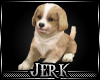 J| Dancin Pup
