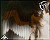 • | Tale | Wings