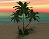 {DS} Palm Trees