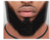 Mason Beard
