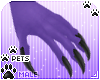 [Pets] Aurora | claws
