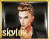 #Sky Brown Hair (Eli)