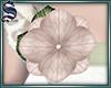 [S]Add-On Flower 01