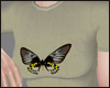 Butterfly Top  Derivable