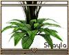 ~S~ Simple Plant 5