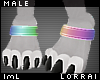lmL Anklet Titanium M