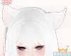 P| Kitty Ears Dove
