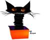 HALLOWEEN CAT (KL)