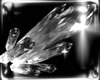 Drow Oblodra Glass