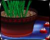 {AR} Palm & Candles