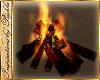 I~Bonfire NP