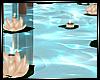 ~Elegant Pool Lillies~