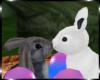 Bunnehs and Eggs Basket