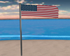 American Flag Animated