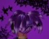 Purple Momoko Tails