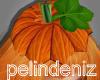 [P] Pumpkin hat