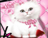 Cutout  Mobile Cat Pink