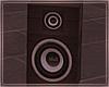 Radio/Speaker