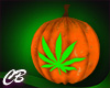 CB Pot Leaf Pumpkin