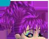 BfB Violet Rumour