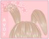 light brown floppy ears