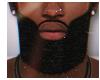 Baltimore Beard