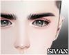 眉g Eyebrows Black