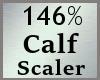 Scale Calf Calve 146% MA