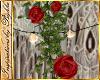 I~Gypsy Rose Vine