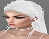 H/Stella White Req.