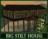 Big Stilt House