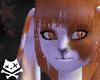 OrangeCrm Cabbit Ears v2