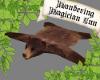 *WM* Bear Rug