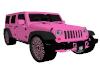 Pink Wrangler (Gift)