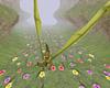 Dragon Flower Field