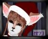Nai Santa hat