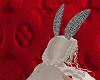 BunnyBundle1; herrcooles