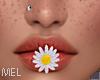 Mel*Spring Flower/Mouth