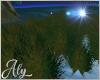 Moon Grass 2