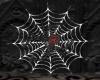 Redbacks Web