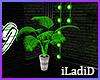 Garage Plant