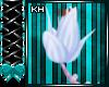 Mejora Tail V4