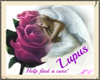 Lupus Awareness Angel