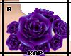 [KOP] Aquila Roses R