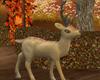 Fall Deer Decor