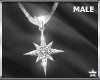 SF  North Star Necklace