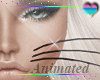 Animated Whiskers ~Dev