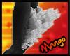 -DM- Grey Mainecoon LegT